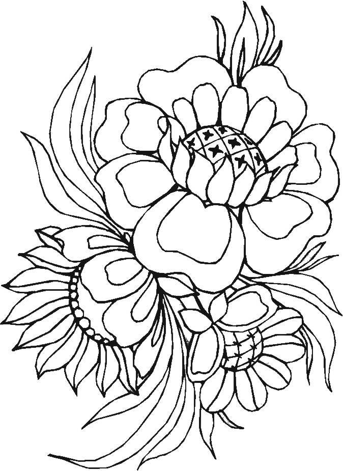 Niedlich Hawaiianische Blume Malvorlagen Zum Ausdrucken Bilder ...